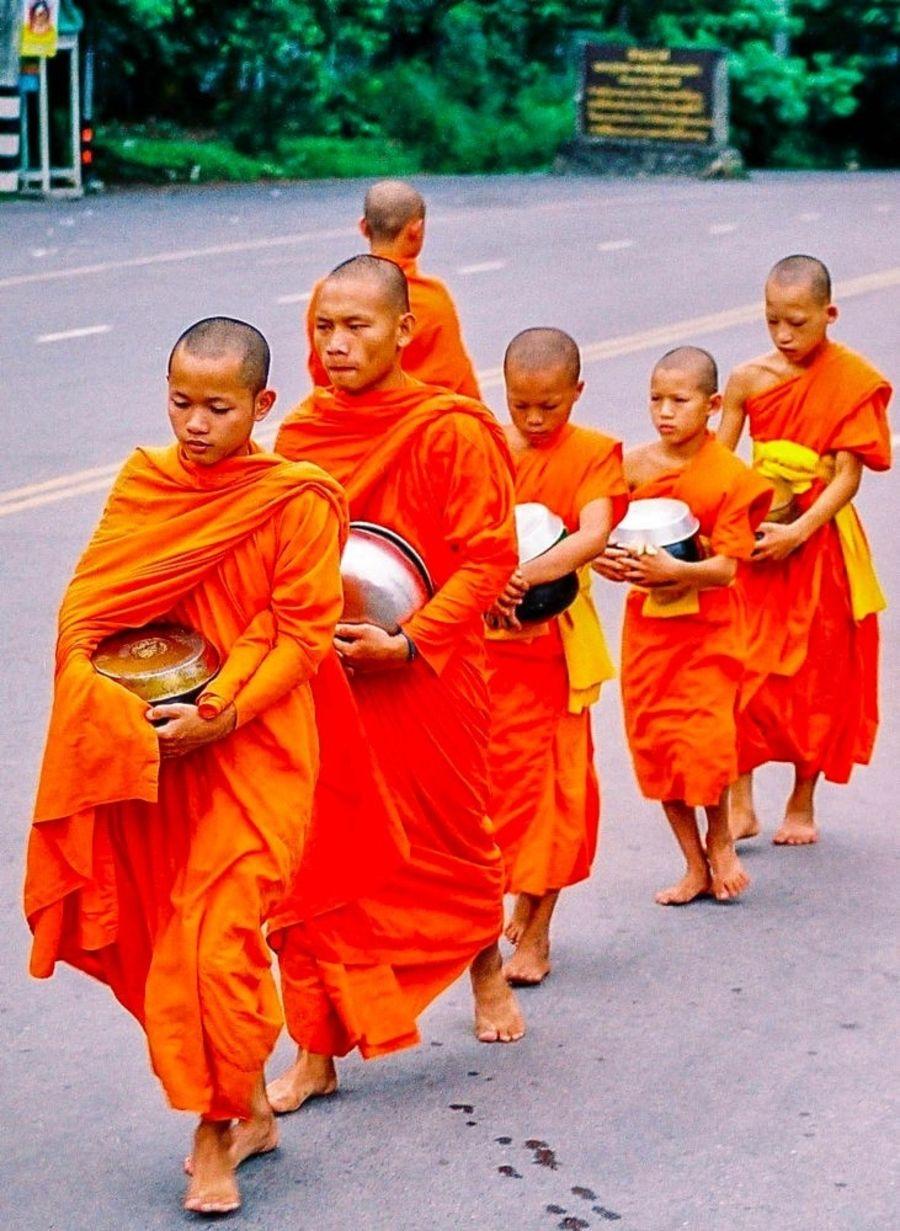Tất cả các nhà sư Thái Lan đều phải đi tu
